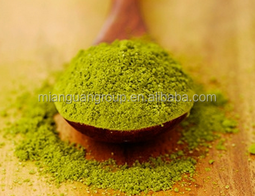 Green Tea (Camellia Sinensis) extract powder 10:1