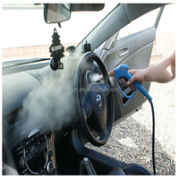 2015 two steam guns LPG steam car washing equipment/steam steam car wash /steam jet