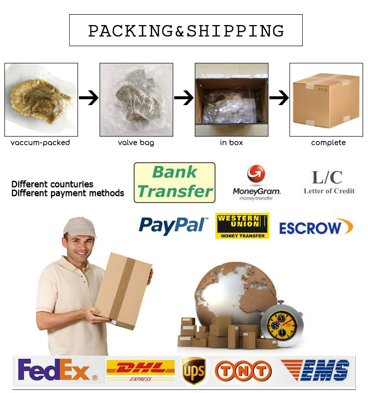 PackingShipping