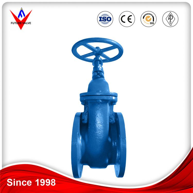 dn600 cast iron metal seated gate valve pn10
