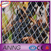 bird netting for fruit trees/uv warp knitted bird net/professional bird net