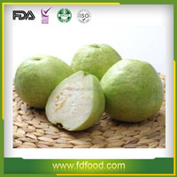 dried fruit chips wholesale bulk Freeze dried guava