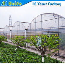 Low cost agriculture greenhouse for sale/invernadero