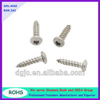 Pan head torx self tapping screws