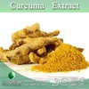 Curcumin Extract Powder,Curcumin Powder,Turmeric Extract Powder 4:1 10:1