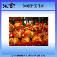 High quality Switzerland Toothpick Flag for promotion
