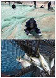 Double Knot Type and PA Plastic Type used commercial fishing nets , redes de pesca de monofilamento de nylon, filet de peche
