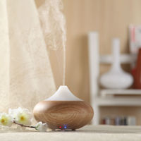 Hot Sales gadget 2014 gift - Aroma Diffuser GX