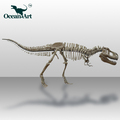 OA5246 Museum equipment animatronic dinosaur skeleton model