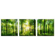 Forest landscape HD Picture Canvas Printing Home Decorative Canvas Artwork Green Scenery Giclee Prints 3-Panel