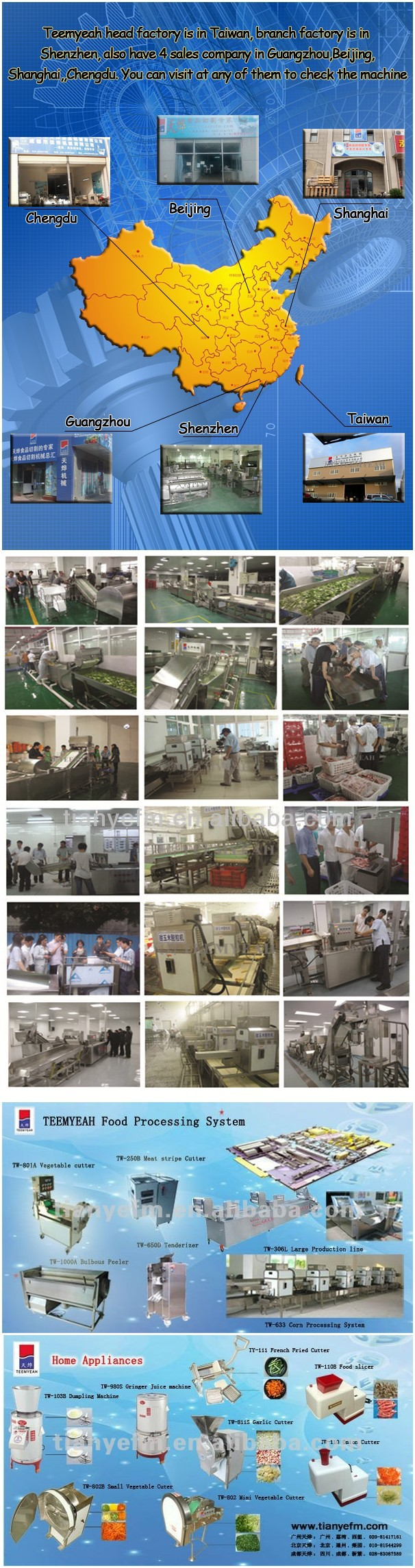 TW-801A Multi-functional Vegetable Cutting Machine Vegetable/Bulb/Cabbage/Carrot/Potato/Cucumber Cutter