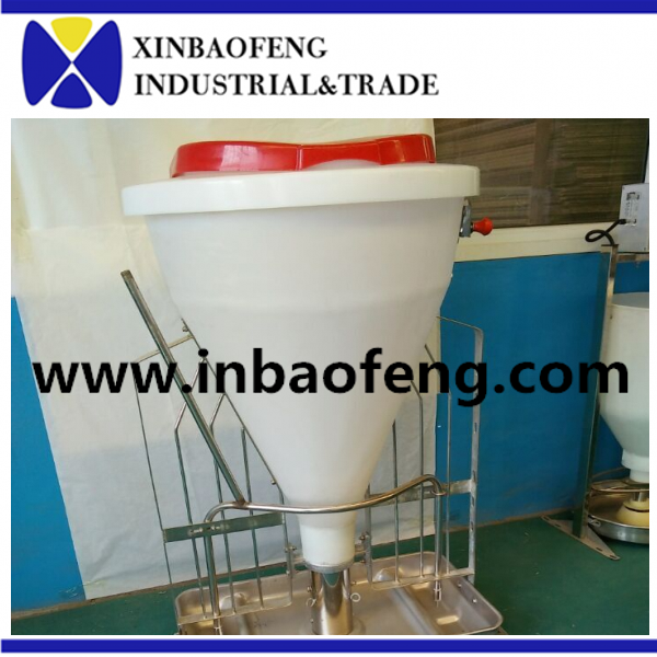 automatic dry wet feeder pig in Xinbaofeng