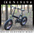 "Fat Tire 20"" electric fat bike cycle, folding E cycle"