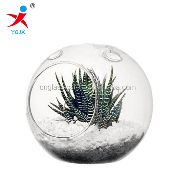 Mini Glass Terrarium With Holes For Miniature Plant / Flat Bottom Ball For Succulent Plant