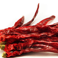 Import Export Red Chilli Chinese erjintiao Chili Chaotian chilli Dry Red Chili