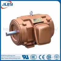 China manufacture professional electric motor 100 kw