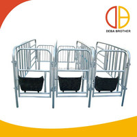 Livestock Equipment Pig Cage Pig Gestation Stall