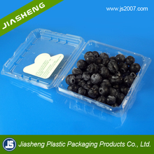 Clear Plastic fruit clamshell packaging container with lid