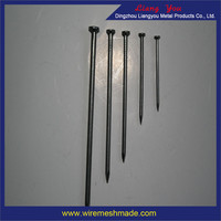 Common Nails/stainless steel twist concrete nails