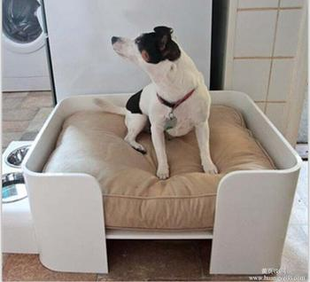 popular acrylic bed for dogs and cats