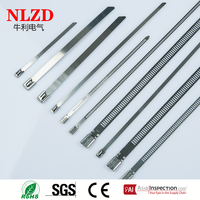 Stainless Steel 304 316 Cable Tie,New design metal ladder stainlee steel tie full sizes with best price