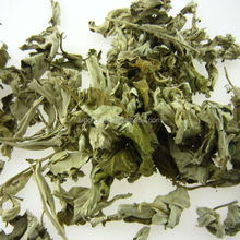 ai ye natural herbs High Quality mugwort leaf