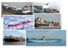 40 foot container shipping from China to USA with the best price