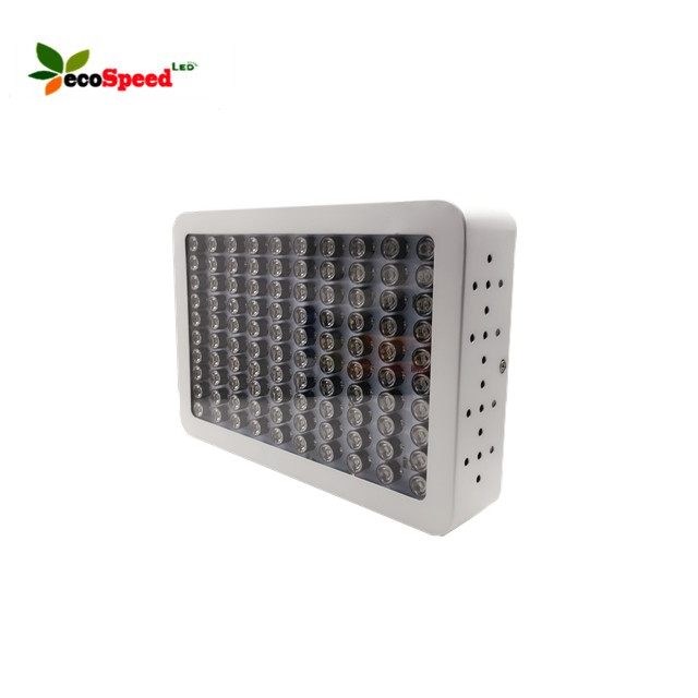 2018 Hot Model 300W Dual LED Grow Light for Medical Plants