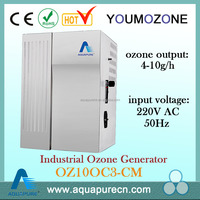 All-in-one 4-10g Adjustable Ozone Generator for swimming pool