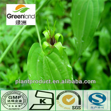 China Plant extract Radix Stemonae P.E.