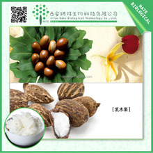 wholesale supply shea nuts extract /free sample unrefined Shea butter extract