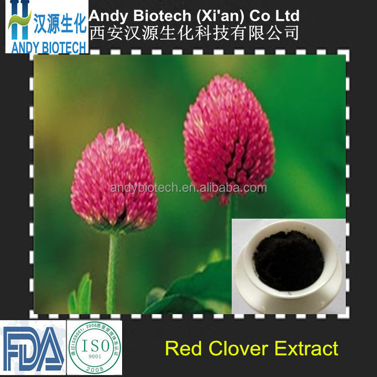 Best Quality Large Stock 20% Isoflavones Red Clover p.e. Powder