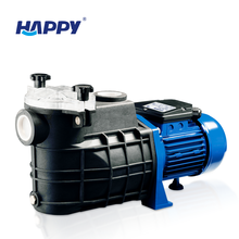 Best motor inverter variable speed system swimming pool water filter motor pump