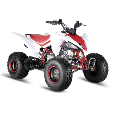 ATV 125CC SPORT ATV QUAD BIKE 125