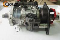 Delphi 8921A892G 28304416AL 95321CEG 1006 Engine fuel injection pump UH1073 DP200 Injection pump