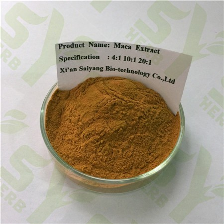 Natural Organic Maca Root Extract Powder for Sale