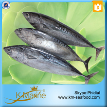 King Marine Seafood Types of Frozen Foods