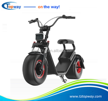 Fat tyre electric scooter 60V 1000W halley two wheels citycoco