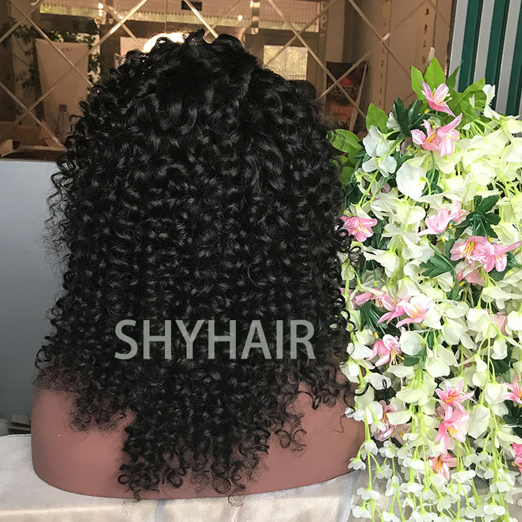 Hot Selling Top Quality Remy Hair Curly Human Hair Wigs For Black Women