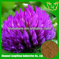Health-protector for women ISO factory serve top quality isoflavone red clover extract/natural herb extract with lowest price