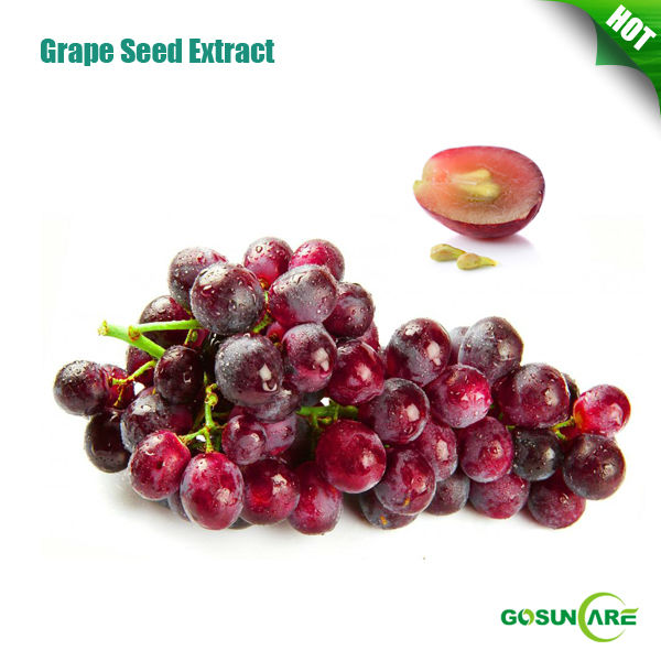 Natural Grape Seed Extract Proanthocyanidins