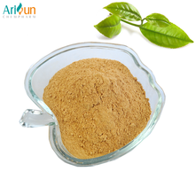 Factory Supply Green Tea Extract L Theanine , EGCG , Catechin