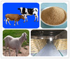 Fat promoter powder for animals choline chloride Vitamin B4 for poultry