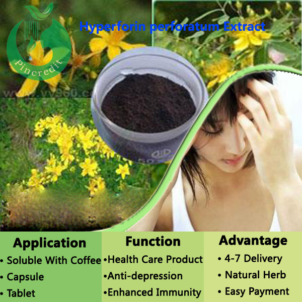 Pure Natural Hypericum Perforatum Extract St Johns Wort Extract Powder Hypericin 0.3%