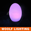 /product-detail/multi-color-wireless-led-outdoor-plastic-lamp-60196902571.html