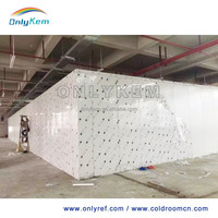 20 feet container cold room, cold storage, cold store for frozen beef