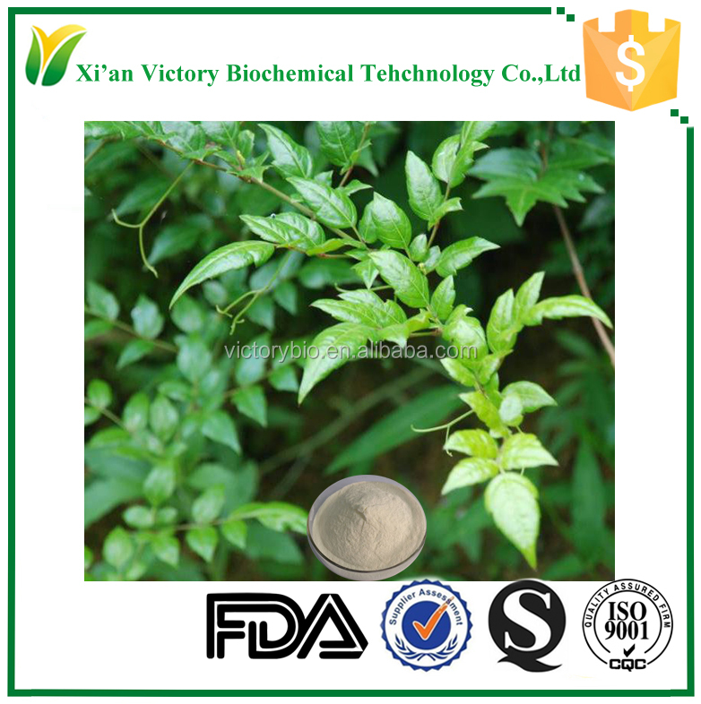 70% rubusoside chinese sweet tea leaf extract