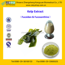 GMP Factory Supply High Quality Kelp Extract Fucoxanthin