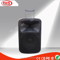 12 inch outdoor powered professional hifi bluetooth battery speaker with led light screen