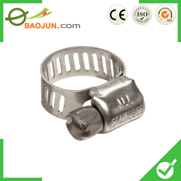 Types Of Hose Clamps/Auto Clamp
